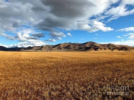 Desert Bliss by Kimberly Maiden