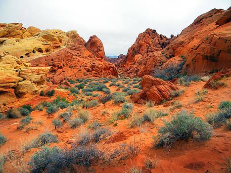 Frank Wilson - Desert Colors