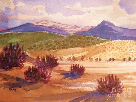 Desert Contrasts by Suzanne McKay