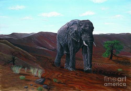 Desert Elephant by Tom Blodgett Jr