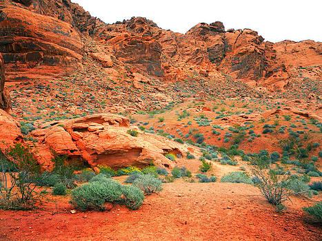 Frank Wilson - Desert Hiking Among The Sandstones