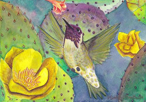 Desert Hummingbird by Heather Stinnett