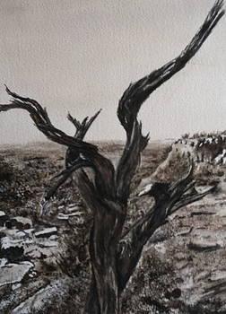 Desert in Sedona in Black and White by Carol Warner