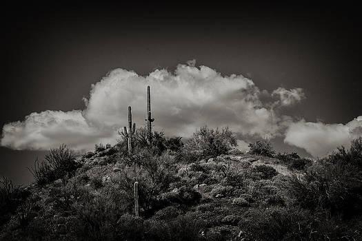 Desert Landscape by Eugene Dailey