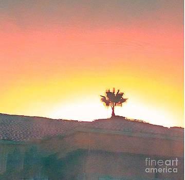 Desert Palm by Anne Sterling