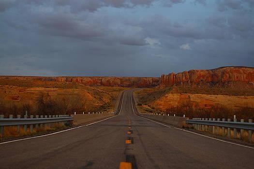 Desert Road by Andrew Ripley