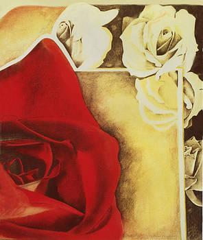 Desert Rose by Judy Paleologos