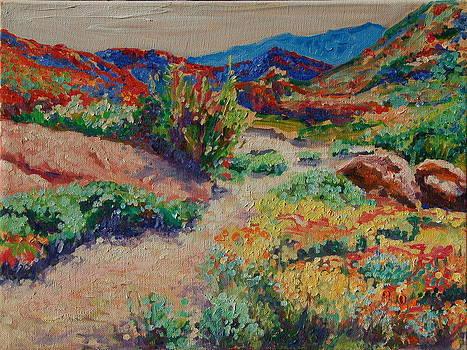 Desert Spring Flowers Namaqualand by Thomas Bertram POOLE