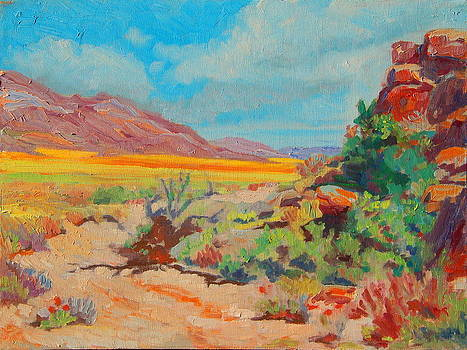 Desert Spring Flowers Namaqualand with Rock Outcrop by Thomas Bertram POOLE