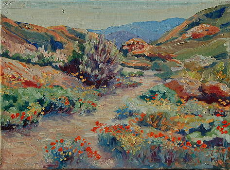 Desert Spring Flowers with Path by Thomas Bertram POOLE