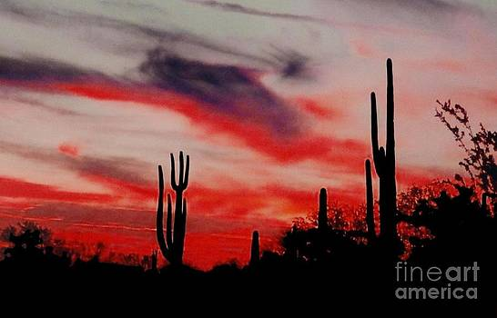 Desert Sunset Northern Lights Version 3 by Joseph Baril