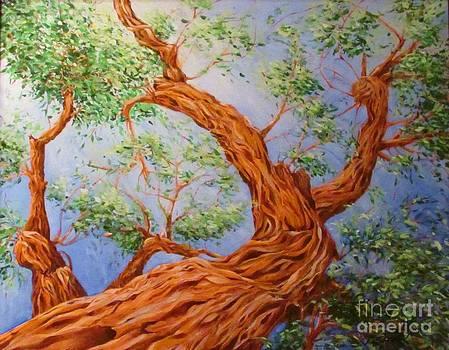 Desert Tree by Beth Fischer