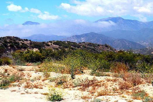 Desert wind by Deborah  Yeager