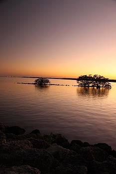 Deserted Island by AR Annahita