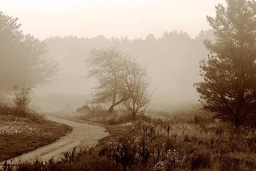 Desolation  by Bruce Patrick Smith