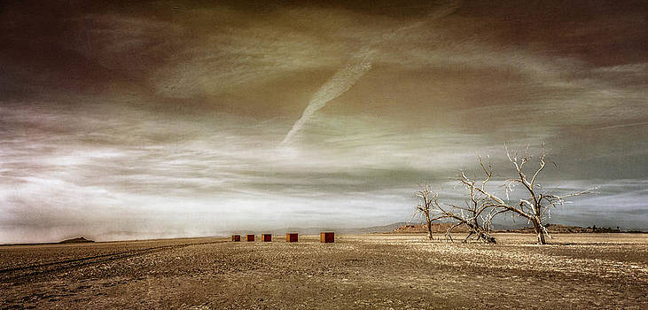 Desolation by Paul Bartell