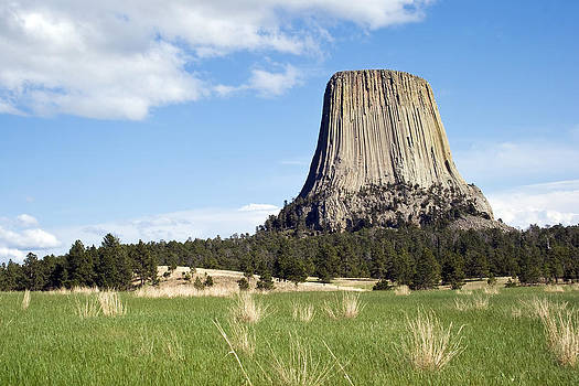 Devils Tower by Jaci Harmsen