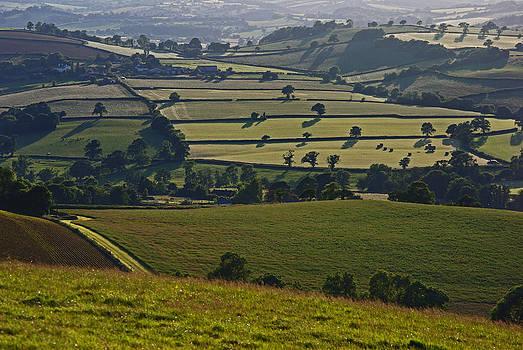 Devonian tapestry of fields by Pete Hemington