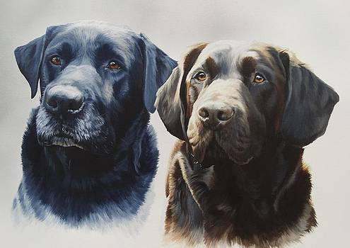 Dexter and Bear by Julian Wheat