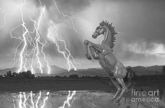 James BO  Insogna - DIA Mustang Bronco Lightning Storm BW
