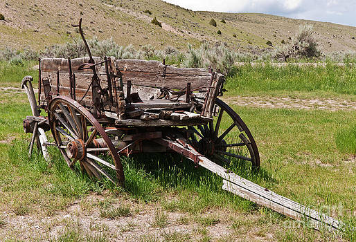 Dilapidated Wagon with Leaning Wheels by Sue Smith