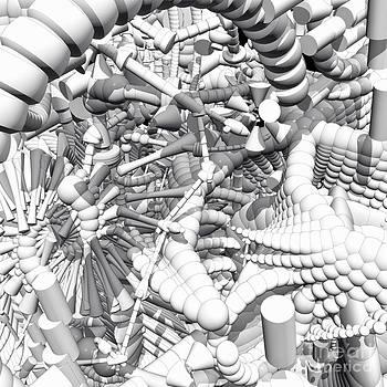 Roseann Caputo - Dimensions