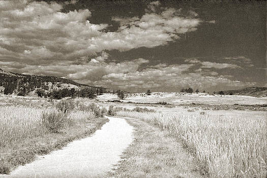 Dirt path leading through a prairie with mountains and cloudy sk by Kim M Smith