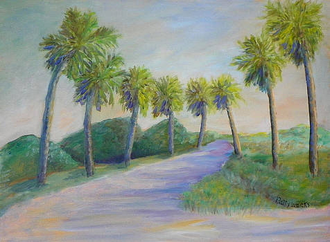 Dirt Road in Marineland Florida by Patty Weeks