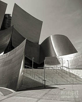 Gregory Dyer - Disney Concert Hall