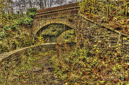 Steve Purnell - Disused Railway Bridge