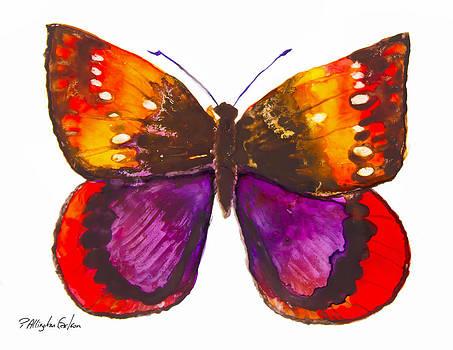 Diva Moth by Patricia Allingham Carlson