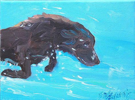 Dive by Sheila Wedegis
