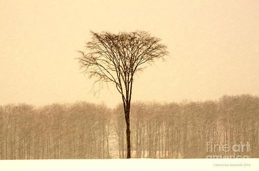 Divergence by Marianne Kuzimski