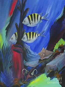 Diving Tormentos by Barbara Petersen