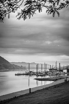 Docks on the River by Lee Wellman