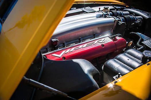Jill Reger - Dodge Viper SRT-10 Engine Emblem -0854c