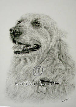 Dog 1 by Kuntal Chaudhuri