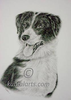 Dog 2 by Kuntal Chaudhuri