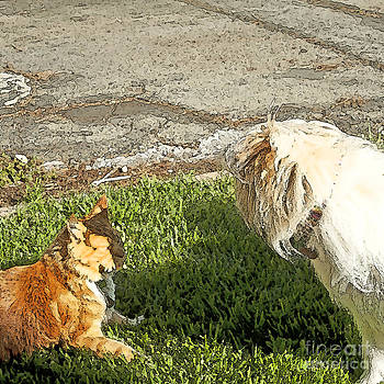 Artist and Photographer Laura Wrede - Dog and Cat Discuss