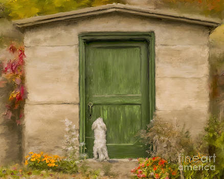Dog at the Door by Andrea Auletta