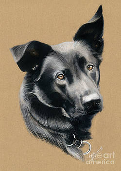 Dog pastel portrait by Jeanne Delage