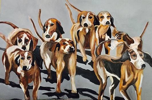 Dog Run by Hogan Willis
