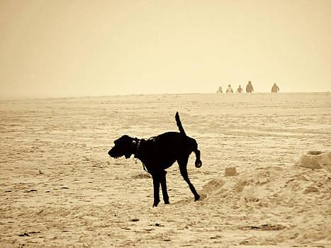 Nicole Frischlich - Doggys special location