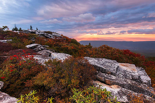Dolly Sods October Sunrise by Joseph Rossbach
