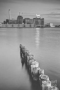 Domino Sugar by Paul Frederiksen