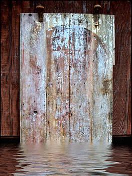 Door #3 by Jeffrey Platt