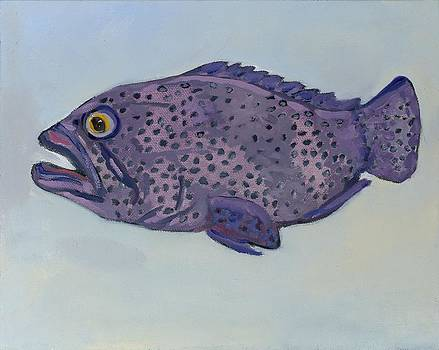 Dot the Fish by Randine Dodson