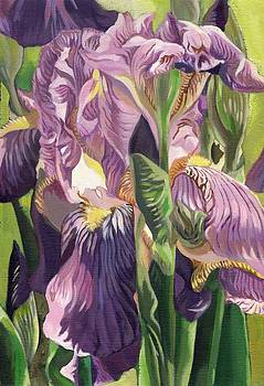 Alfred Ng - Double purple Irises -painting