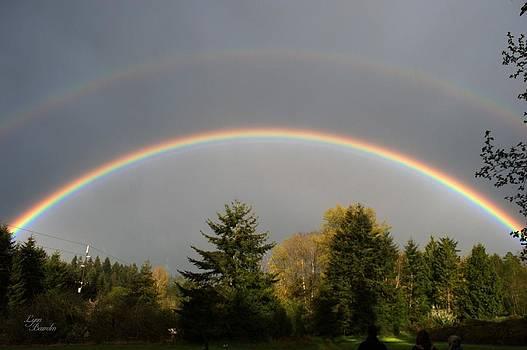 Double Rainbow by Lynn Bawden