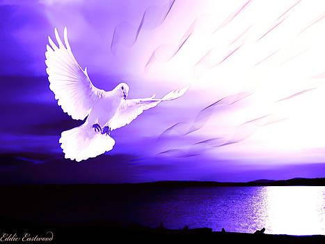 Dove of my Dreams by Eddie Eastwood